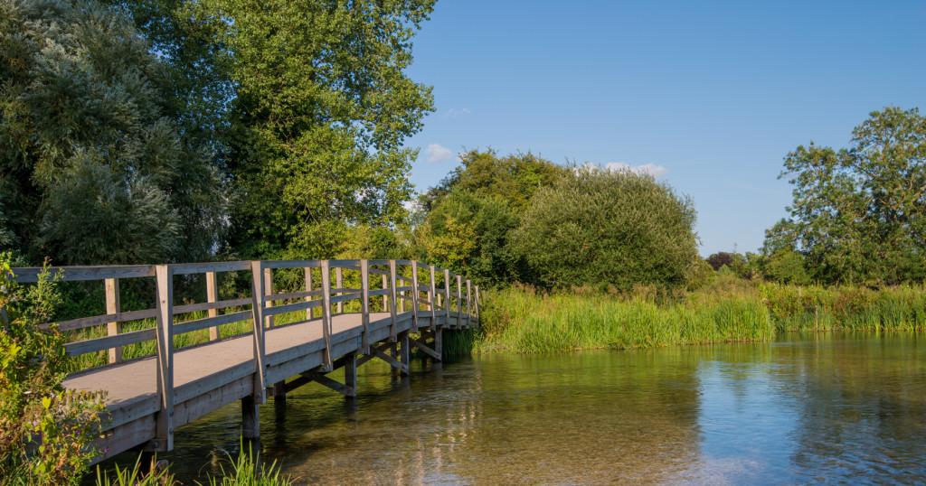 Bridge over River Test-crop